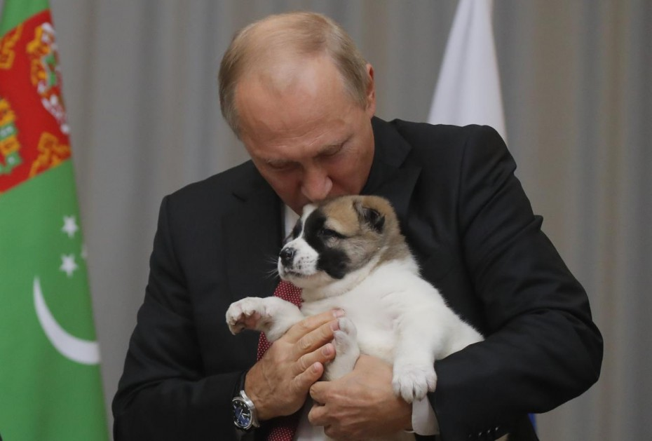 Russian President Putin kisses a Turkmen shepherd dog presented by Turkmenistan's President Berdimuhamedov during a meeting in Sochi
