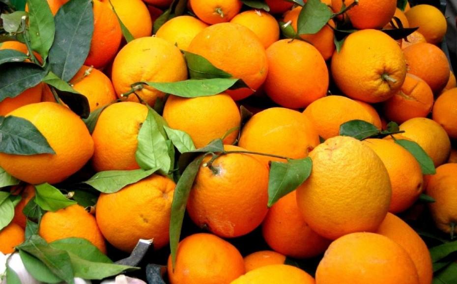 Δέσμευση πορτοκαλιών σε επιχείρηση του Πειραιά