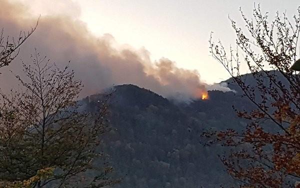 Ισχυρότατη πυρκαγιά στο Κακοτάρι της Ηλείας