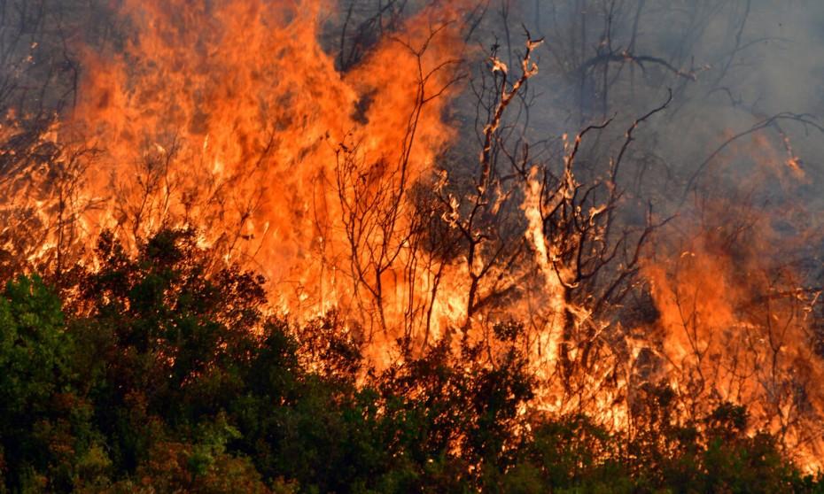Σε εξέλιξη φωτιά στη Ζαχάρω Ηλείας