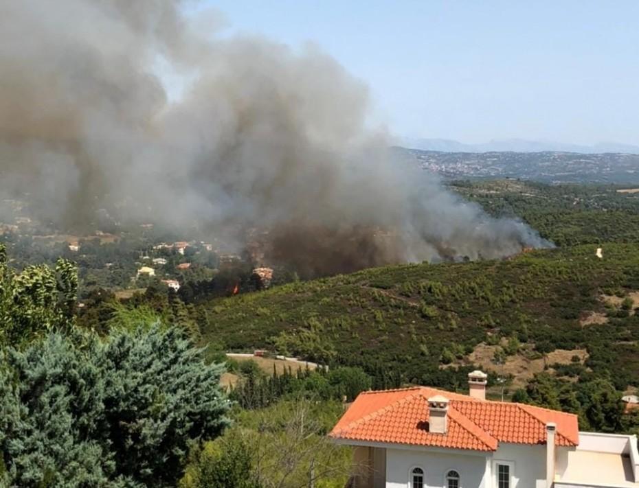 Πύρινα μέτωπα στην Αττική: Μάχη της Πυροσβεστικής σε Σταμάτα και Υμηττό