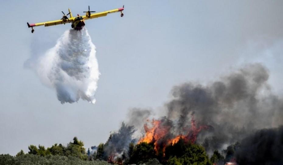 Φωτιά στην Καλαμάτα: Σε δασική έκταση στο Βασιλίτσι οι φλόγες