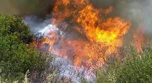 Λαμία: Τρίωρη μάχη με τις φλόγες στην Φθιώτιδα