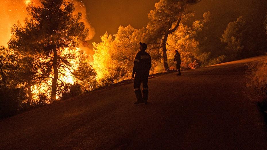 Δύο πυρκαγιές σε δασικές εκτάσεις στη Νέα Μάκρη